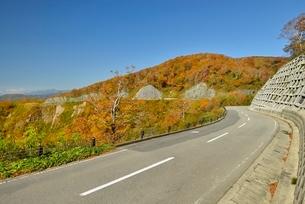 西吾妻スカイバレー道路と紅葉の写真素材 [FYI01720073]