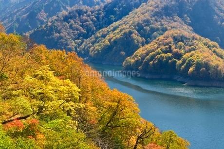 田子倉湖と紅葉の写真素材 [FYI01720105]