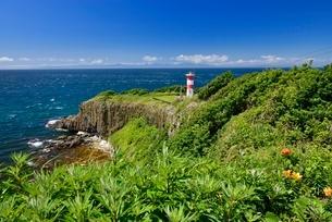 高野崎と灯台の写真素材 [FYI01720114]