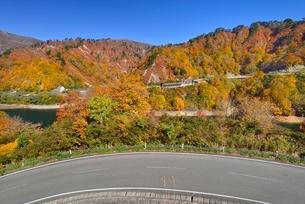 田子倉湖付近の紅葉と国道252号の写真素材 [FYI01720214]
