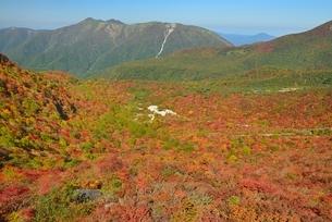 那須岳姥ヶ平の紅葉の写真素材 [FYI01720229]
