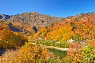 田子倉湖付近の紅葉と浅草岳の写真素材 [FYI01720313]