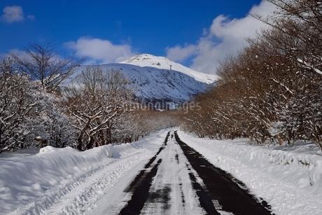 冬のボルケーノハイウェイと茶臼岳の写真素材 [FYI01720358]