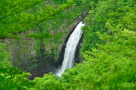 不動滝の写真素材 [FYI01720431]
