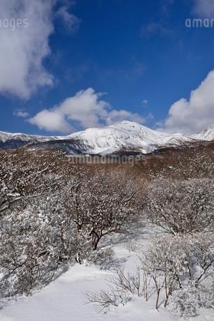 冬の茶臼岳の写真素材 [FYI01720541]