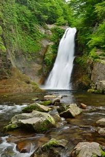 秋保大滝の写真素材 [FYI01720603]