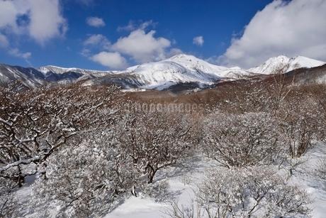 冬の茶臼岳と朝日岳の写真素材 [FYI01720659]