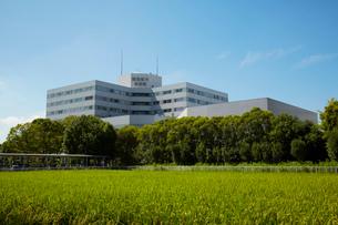 東京慈恵会医科大学附属柏病院の写真素材 [FYI01721550]