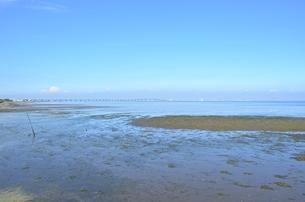 牛込海岸潮干狩場の写真素材 [FYI01722015]
