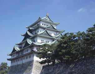 名古屋城天守閣の写真素材 [FYI01722166]