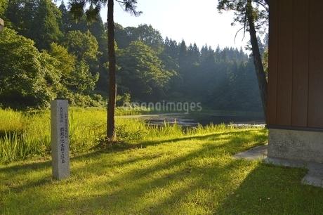郡殿の池の写真素材 [FYI01722635]