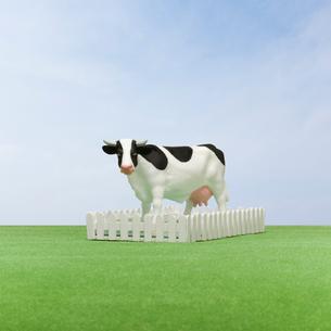 牧場の牛 ミニチュアの写真素材 [FYI01723201]
