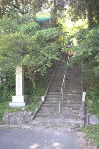 軍荼利山植物群落の写真素材 [FYI01723343]