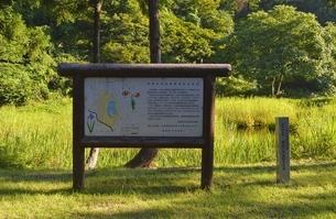 郡殿の池の写真素材 [FYI01724056]