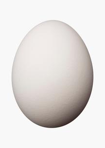 卵の写真素材 [FYI01724409]