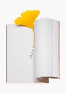 イチョウの葉のしおり 読書の秋イメージの写真素材 [FYI01724826]