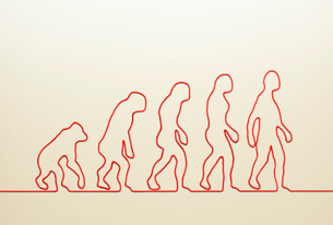 一本の紐でつくった類人猿の進化の写真素材 [FYI01725077]