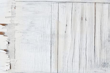 朽ちた木の板の白い背景の写真素材 [FYI01725156]