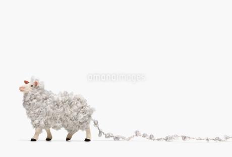 羊毛でふわふわしたひつじのフィギュアの写真素材 [FYI01725238]
