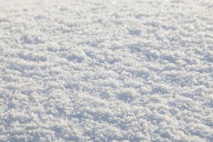 雪の写真素材 [FYI01725269]