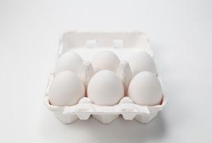 パックに入った卵の写真素材 [FYI01725333]