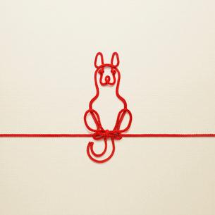 赤い紐でつくった犬(戌)のイメージの写真素材 [FYI01725665]