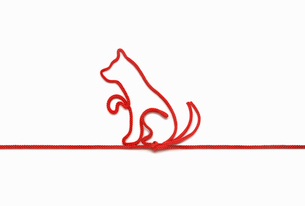 赤い紐でつくった犬(戌)のイメージの写真素材 [FYI01725696]