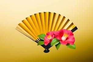 金の扇子とつばきの花の写真素材 [FYI01725720]