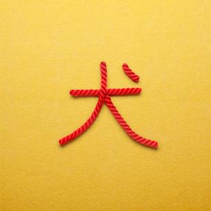 赤い紐でつくった犬の文字の写真素材 [FYI01725727]