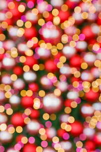 クリスマスツリーのイルミネーションの写真素材 [FYI01725889]
