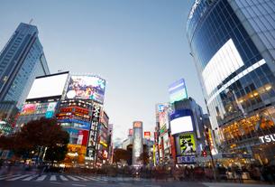 渋谷スクランブル交差点の写真素材 [FYI01725955]