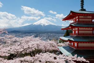 富士山とサクラと五重塔の写真素材 [FYI01726035]