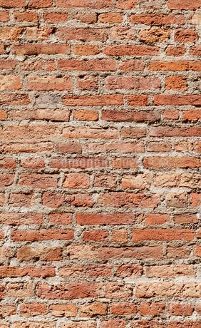 レンガ壁の写真素材 [FYI01726186]
