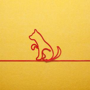 赤い紐でつくった犬(戌)のイメージの写真素材 [FYI01726211]