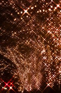 東京丸の内の街路樹のイルミネーションの写真素材 [FYI01726214]