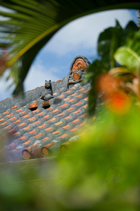 屋根上にいるシーサーの写真素材 [FYI01726226]