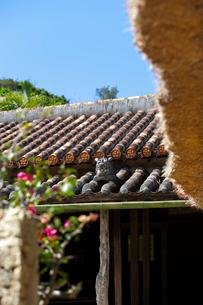 屋根上にいるシーサーの写真素材 [FYI01726267]