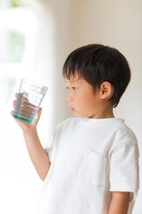 室内でコップの水を観察する子供の写真素材 [FYI01726299]