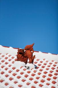 屋根上にいるシーサーの写真素材 [FYI01726314]