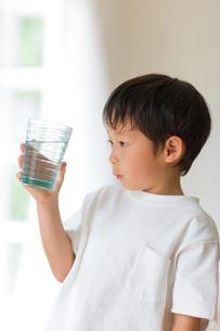 室内でコップの水を観察する子供の写真素材 [FYI01726354]