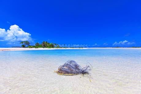 青い空と海の写真素材 [FYI01726372]