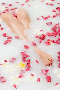 フラワーバスに入る女性の足の写真素材 [FYI01726373]