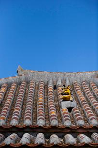 屋根上にいるシーサーの写真素材 [FYI01726448]