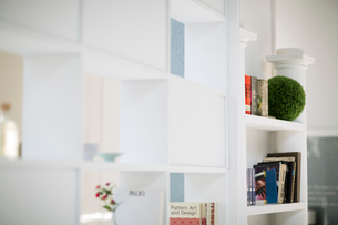室内のキャビネットにある本やグリーンの写真素材 [FYI01726478]