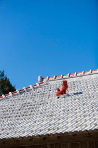 屋根上にいるシーサーの写真素材 [FYI01726492]