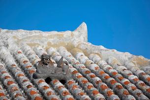 屋根上にいるシーサーの写真素材 [FYI01726529]