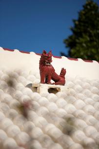 屋根上にいるシーサーの写真素材 [FYI01726534]