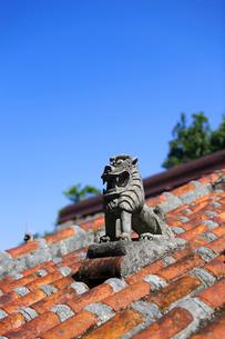 屋根上にいるシーサーの写真素材 [FYI01726573]