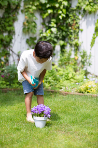 庭で鉢植えの花にスプレーする子供の写真素材 [FYI01726577]