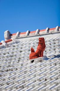 屋根上にいるシーサーの写真素材 [FYI01726710]